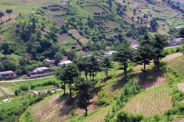 Rwanda Natural Resources Authority