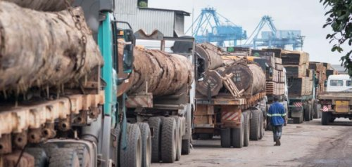 June_2018_-_Uganda_hosts_6th_annual_forum_on_illegal_timber_trade_-_Large.jpg